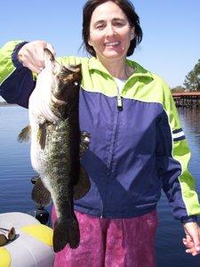 Butler Chain Bass Fishing