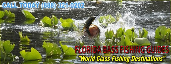 Florida Bass Fishing Guides in Orlando Florida